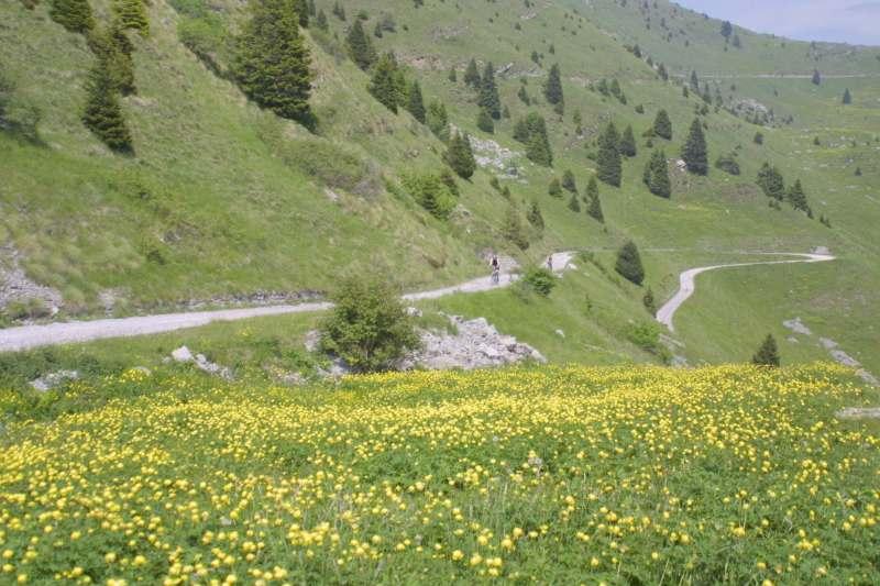 Cover Parco Regionale dell'Alto Garda Bresciano