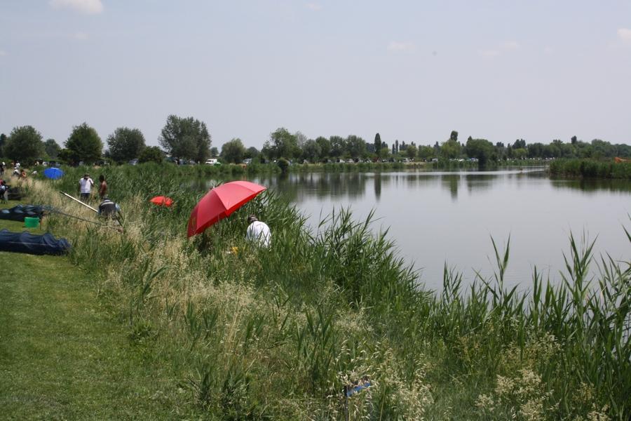 campo-gara-ostellato-12-06-2011-002
