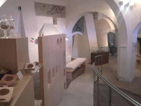 museo-del-tartufo