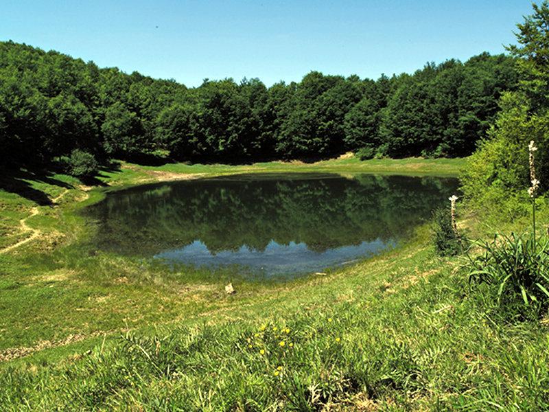 Cover Oasi WWF di Lago Secco