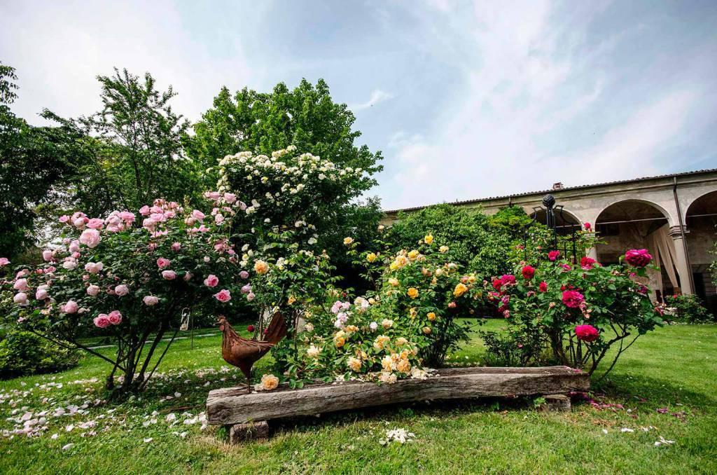 castelloquistini-fioriture-14