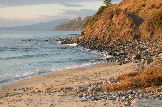 Cover Spiagge e scogliere di Palinuro, Primula di Palinuro