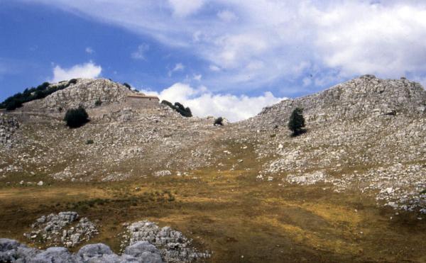 Cover Monte Cervati e Valle delle Orchidee