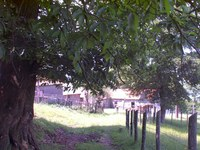 immagine-mini-1