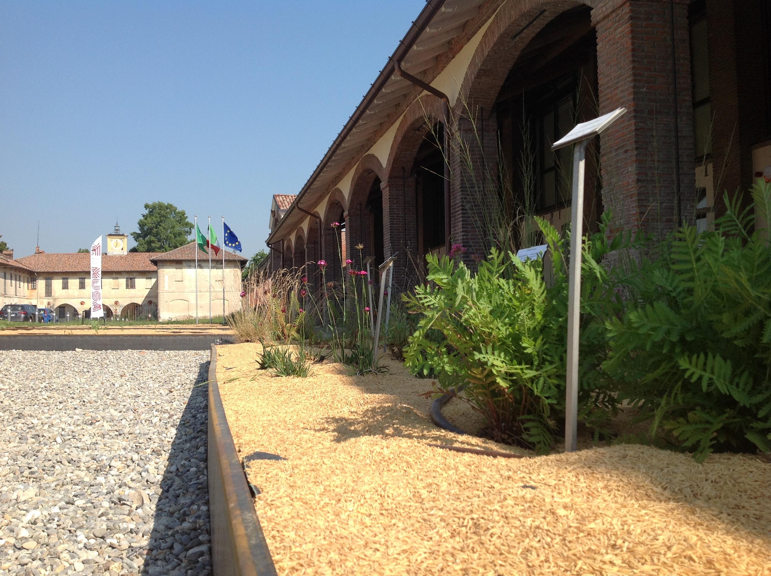 Cover MUSA Museo Salterio – Officina del Gusto e del Paesaggio