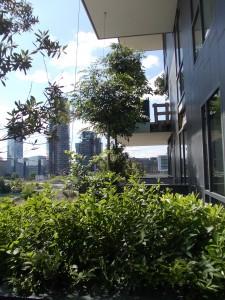 bosco-verticale-lgatti-2013-08-06-east-facade-225x300