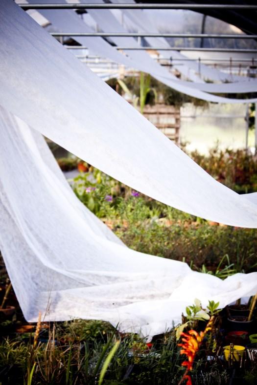 il-giardino-d-inverno