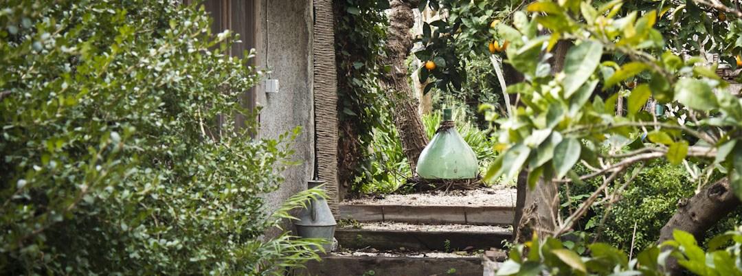 il-giardino-d-ombra