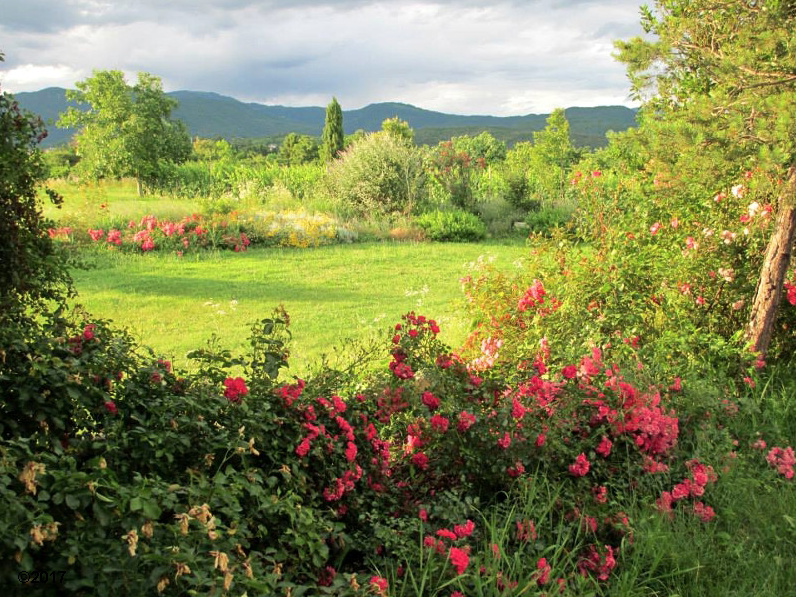 3il-giardino-del-chiostro